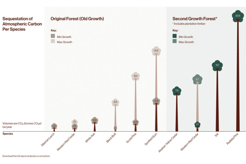 Biomass Growth and Carbon Sequestration A Comparison of Tree Species Abodo Wood