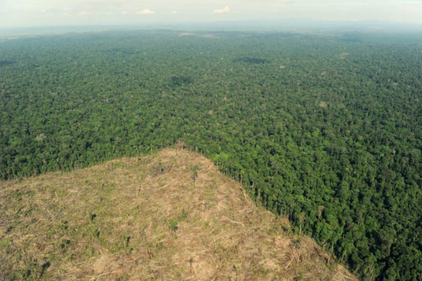 Sustainable Australian Timbers